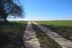 pauliaus-sliaupos-namai-karantino-metu-belgijos-huldenberg-kaime-belgijoje-galerijos-meno-nisa-archyvo-nuotr-1