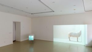 Laura Sabaliauskaite exhibition